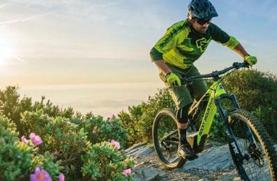 Macarthur eBikes Electric Bikes